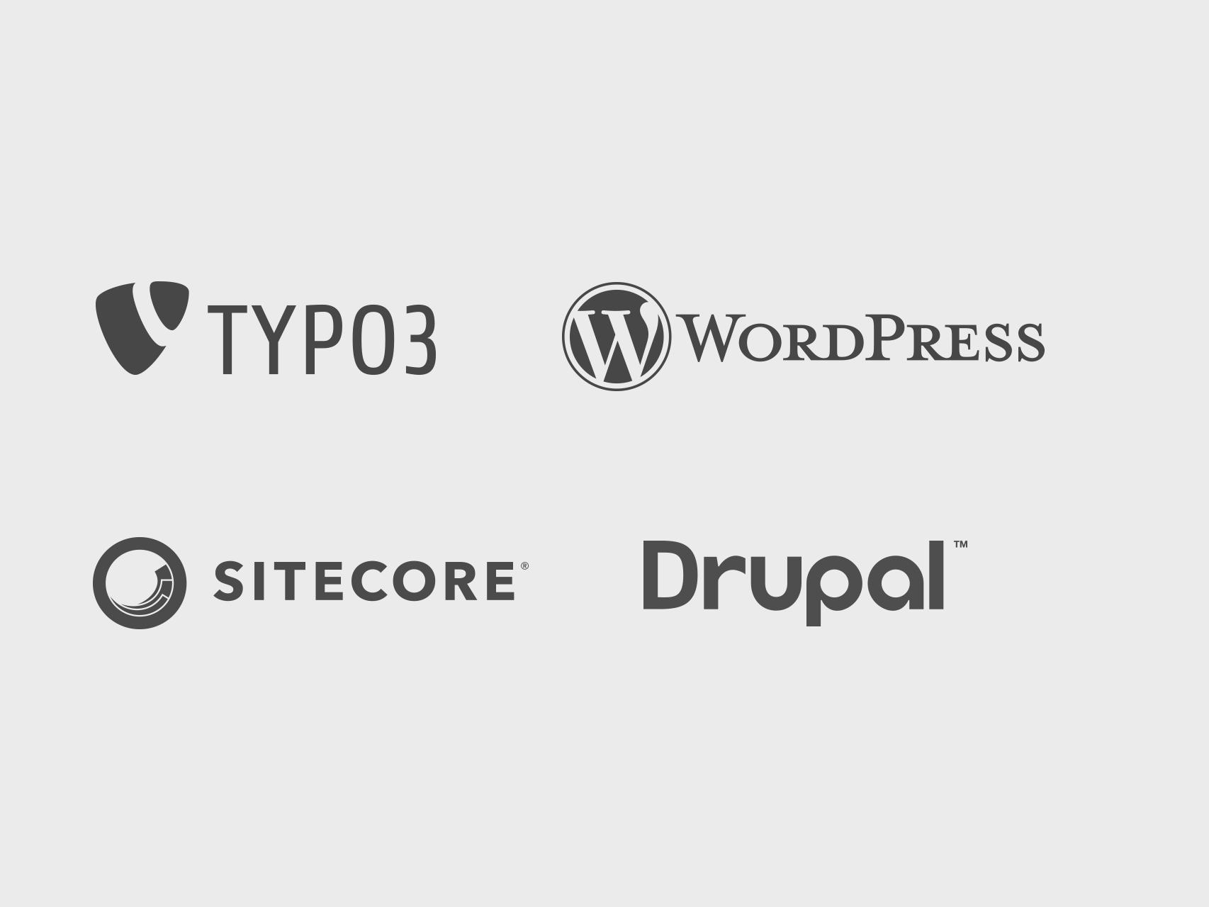 Webentwicklung: Typo3, WordPress, Sitecore, Drupal